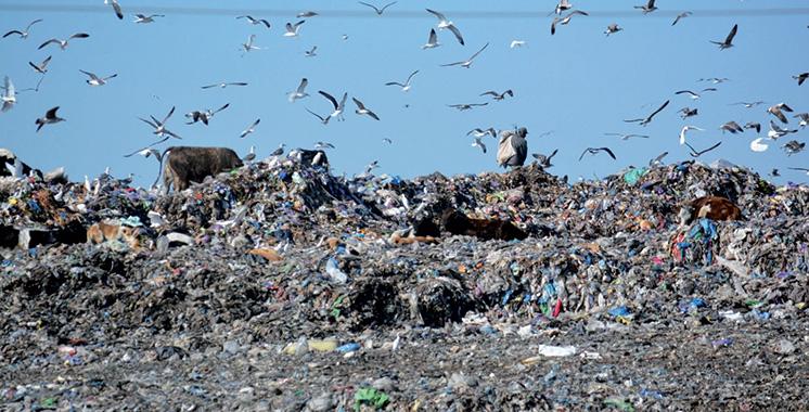 Les Casablancais produisent près de 4.000 tonnes de déchets par jour