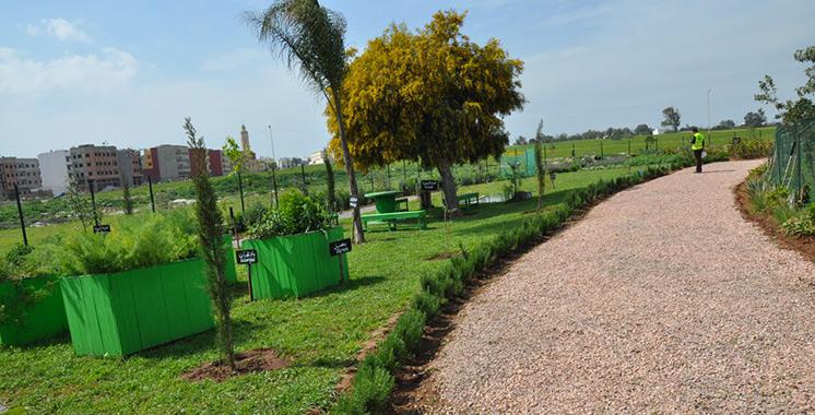 Station d'épuration des eaux usées de Médiouna : Lydec encourage l'agriculture urbaine