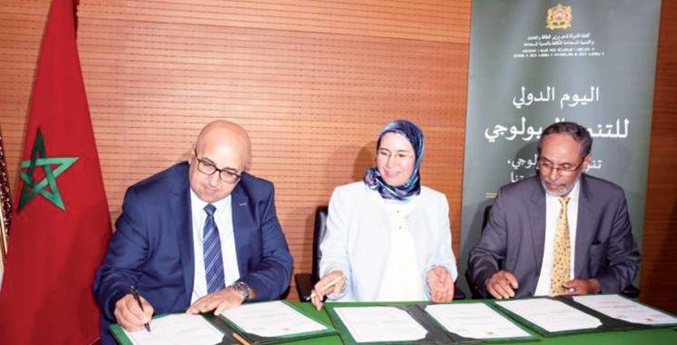 Quand l'Université Mohammed V se positionne dans  le développement durable