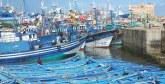 Pêche côtière et artisanale : Des débarquements de près de 3 milliards  de dirhams à fin avril