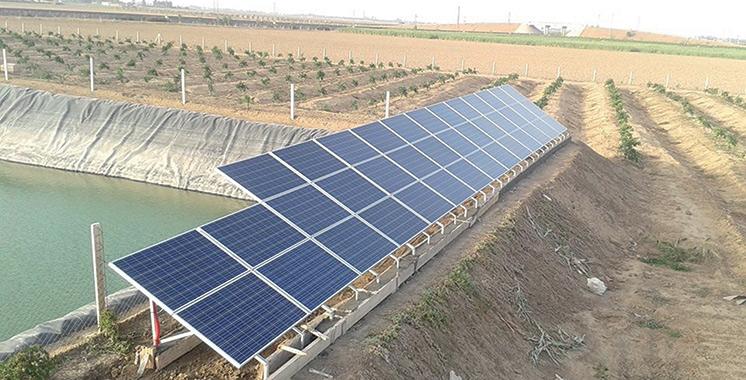 Pompage solaire : 30.000 exploitations agricoles au Maroc équipées en panneaux photovoltaïques