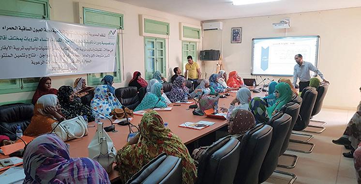 Pilier II du Plan Maroc Vert : Un programme de formation au profit des agriculteurs de Laâyoune