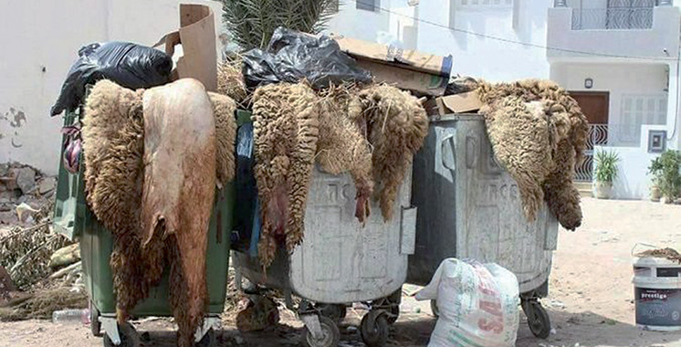 Valorisation des peaux pendant l'Aïd Al Adha : 7 milliards de centimes par an et plus  de 5.000 emplois perdus