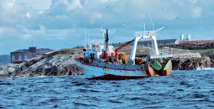 Accord de pêche durable Maroc-UE : Les premières licences pour bientôt