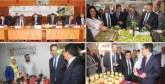 Casablanca-Settat mise sur les coopératives agricoles : 1.250 à créer d'ici 2023