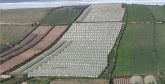 Salon régional des produits du terroir d'El Jadida :  Les coopératives agricoles entrepreneuriales à l'honneur