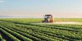 Une campagne agricole précoce à Rabat-Salé