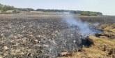 Incendie à Merja Zerga :  Le périmètre a été stabilisé et ne présente plus aucun risque