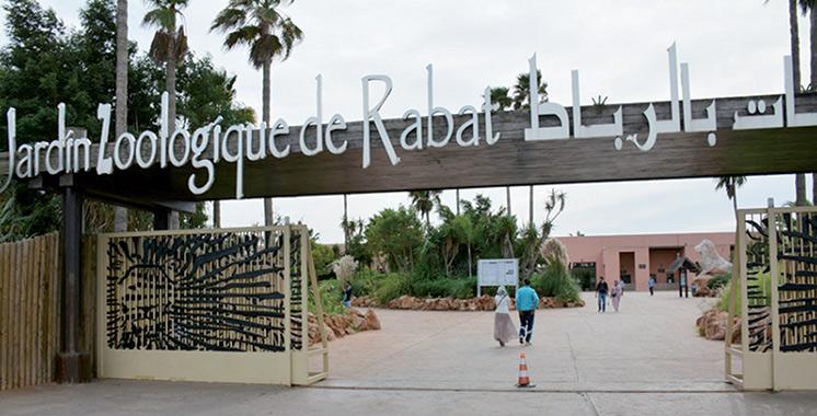 Jardin zoologique de Rabat : Naissance en 2019 de plus de 150 animaux dont des espèces menacées d'extinction