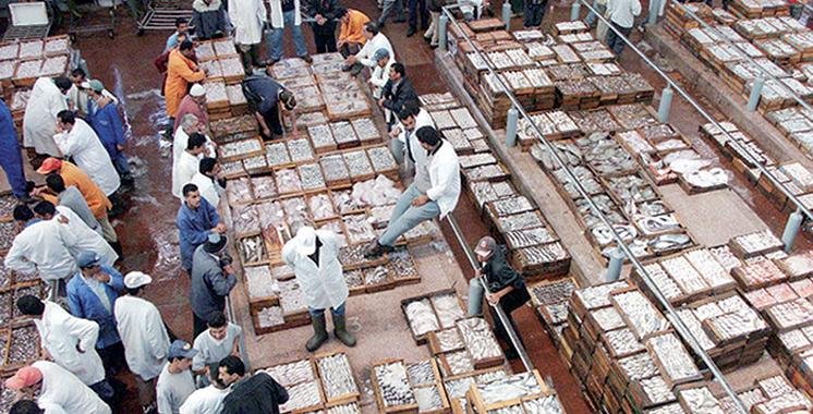 Un marché de vente de poisson en détail à Boujdour
