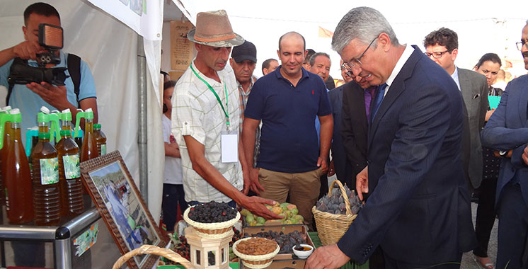 Plus de 3 millions DH pour le développement du figuier à Berkane