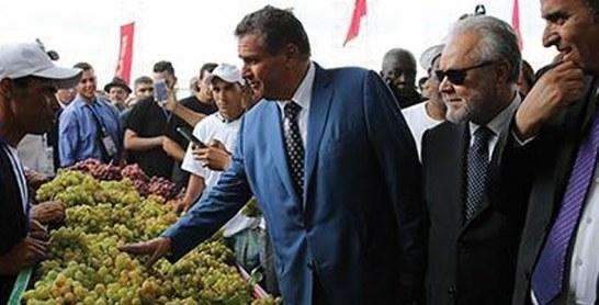 Insuffler une nouvelle dynamique au secteur viticole dans la région