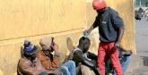 Aide au retour volontaire et à la réintégration : Plus de 11.300 migrants au Maroc en ont bénéficié