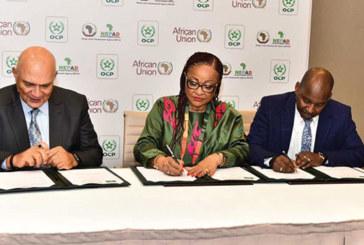 Le coup de pouce d'OCP à l'agriculture en Afrique