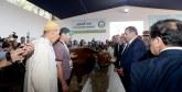 Le 1er marché à bestiaux moderne du Maroc fin prêt
