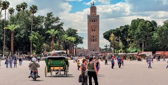 Marrakech : La Semaine scientifique  et culturelle de l'étudiant  du 25 au 28 mars prochain