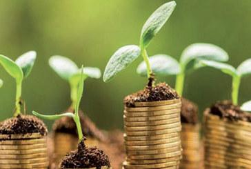 Economie verte : La transition en marche