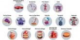 A l'occasion du 40ème anniversaire de Happy Meal : McDonald's déterre ses jouets iconiques