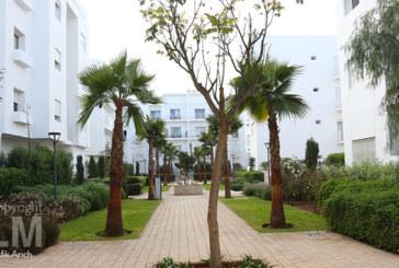 Quartier Almaz, le nouveau-né de Saham immobilier