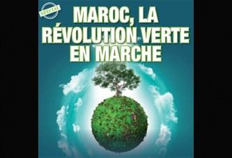 Spécial: Maroc, la révolution verte en marche