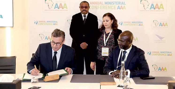 Agriculture durable : Le Maroc montre la voie avec l'Initiative triple A