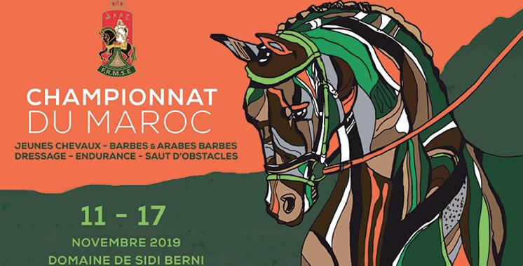 Sports équestres : Le championnat des jeunes chevaux, barbes et arabes barbes au Domaine de Sidi Berni