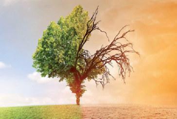 Climat : Le Maroc montre la voie