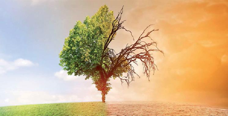 A l'initiative du Centre de compétences en changement climatique : Des ateliers régionaux pour renforcer les capacités sur la finance climat