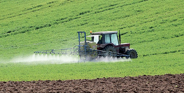 Agriculture résiliente aux changements climatiques : Des experts allemands ouvrent la voie de l'adaptation
