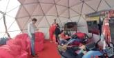 E-racing : Vivo Energy Maroc s'y met