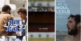 A la découverte de «Roujoula», «Le Park» et «Moul Lkelb»