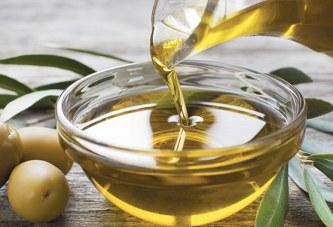 L'olivier promis à un bel avenir