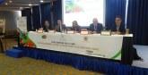 Tanger : Des recommandations pour favoriser le développement de la filière des petits fruits rouges