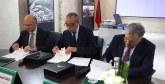 Tourisme de croisière : Les autorités portuaires de Tanger-ville, Malaga et Tenerife s'allient