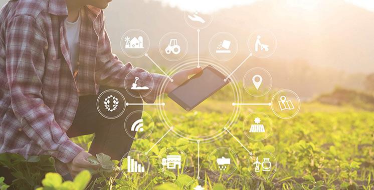 Produits alimentaires agricoles et maritimes exportés : Le système de contrôle technique digitalisé à partir de février
