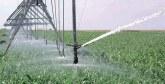 Utilisation durable des eaux de la plaine du Saïss : Le projet d'aménagement hydro-agricole avance à grands pas