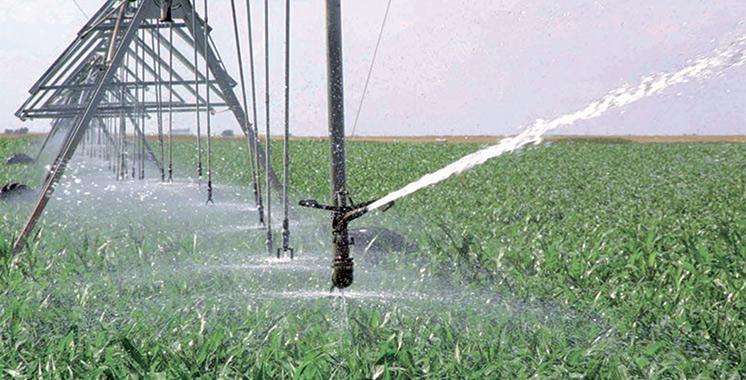 Irrigation, agrofourniture et infrastructure de l'eau : CMGP et Comptoir Agricole du Souss en synergie