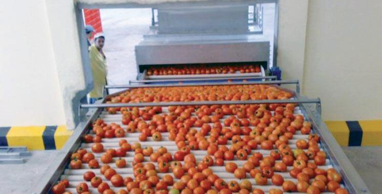 109 millions DH pour une station de conditionnement de fruits et légumes à Dakhla