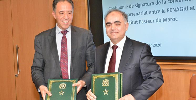 Sécurité sanitaire, hygiène et qualité : Signature d'une convention-cadre entre l'Institut Pasteur du Maroc et la Fenagri