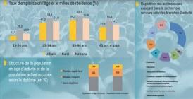 Emploi : Les actifs majoritairement peu qualifiés