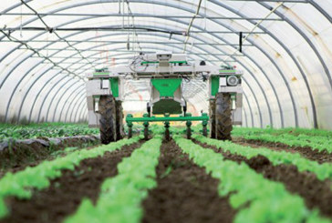 Nouvelle stratégie de développement agricole : «Al Jayl Al Akhdar» présenté en Conseil  de gouvernement