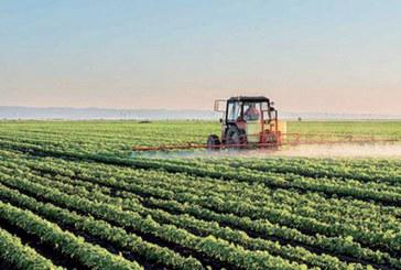 L'activité se poursuit dans le secteur : Une cadence normale pour l'activité agricole
