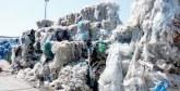 Gestion des déchets plastiques agricoles : Agrotech Souss-Massa lance un nouveau projet