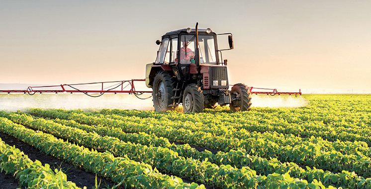 S'alignant sur la stratégie «Al Jayl Al Akhdar»  : L'ADA prépare un schéma directeur des métiers agricoles