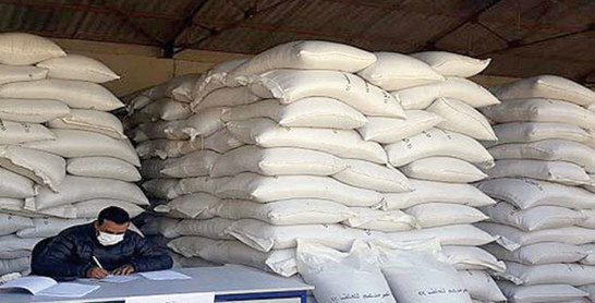Souss-Massa : 100.000 quintaux d'orge subventionné pour les éleveurs
