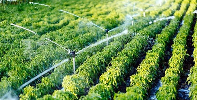 [Bild: irrigation-Agriculture.jpg?x29840]