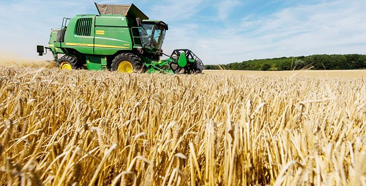 Campagne céréalière – Blé tendre : Prix de référence fixé à 280 DH/quintal rendu moulin