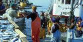 Covid-19 : Série de campagnes de sensibilisation  au profit des pêcheurs au port de Safi
