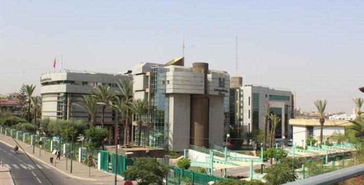 LafargeHolcim Maroc : Campagne de plantation d'arbres et de ramassage de déchets à Bouskoura