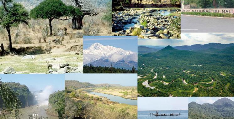 Gestion des parcs nationaux : Le verdict de la Cour des comptes